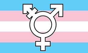 Transexuales